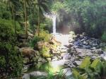Nature photographic 2